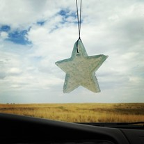 Cool Citrus Basil Hanging Gel Air Freshener - Star