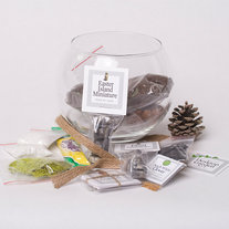 Desktop Terrarium Kit in a Glass Bowl