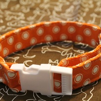 Creamsicle Collar: Medium