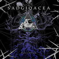 SADGIQACEA FALSE PRISM LP