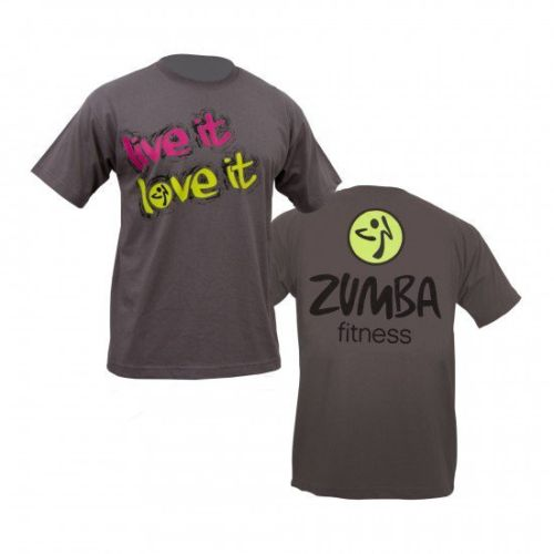 how to become a zumba instructor online