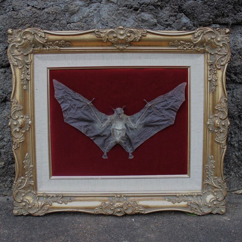 Vintage ornate frame with custom insert upholstered with red velvet ...