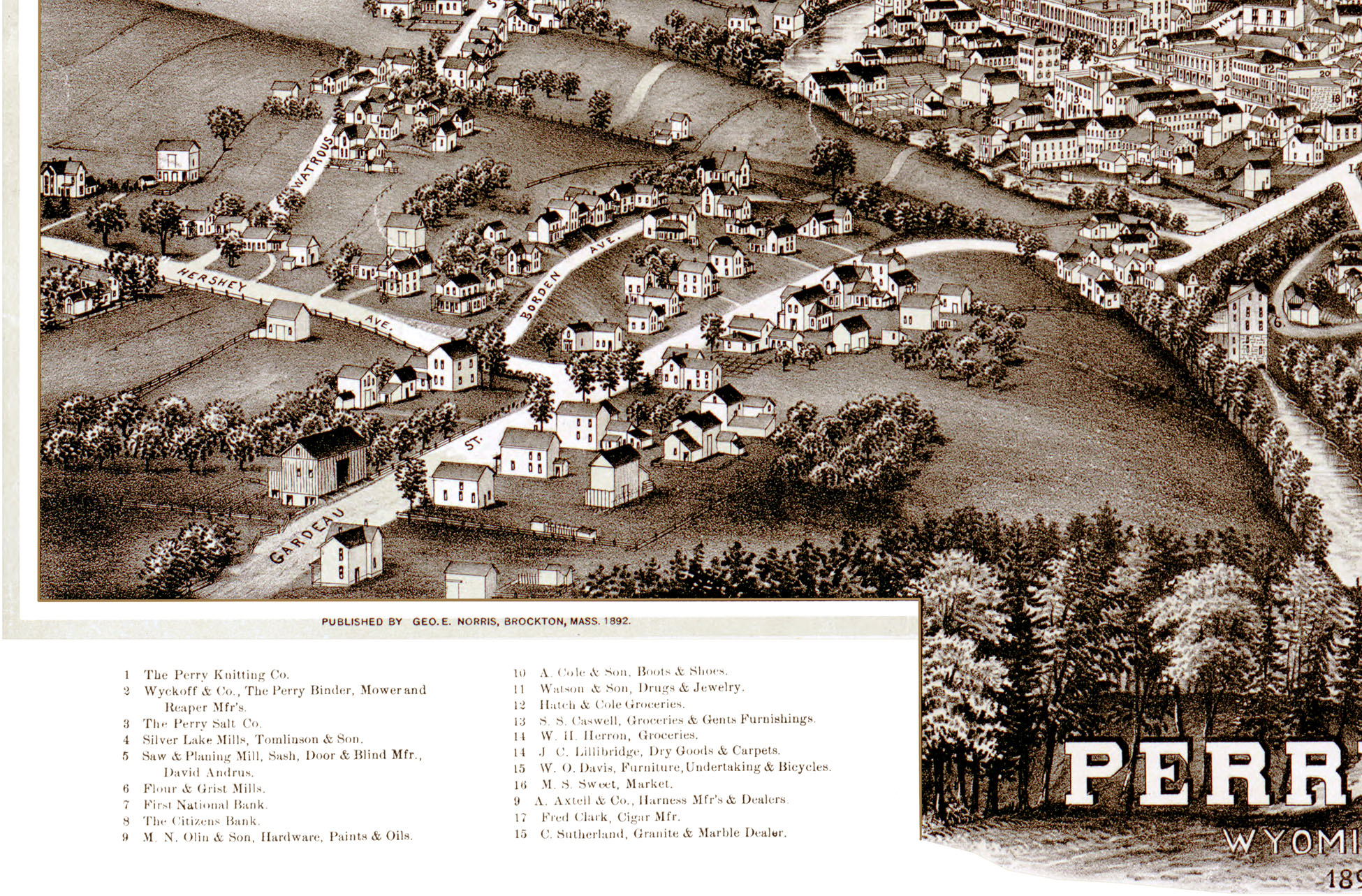 Perry New York In Birds Eye View Aerial Panorama Vintage - Antique map dealers