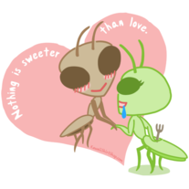 Ladies' T-Shirt - Kawaii Valentine - Praying Mantis