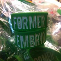 Former Embryo - Wristband