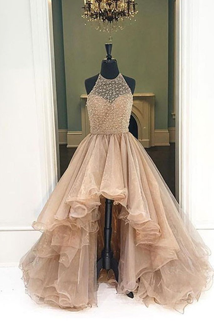 2018 Champagne Organza Prom Dress, High Low Dress, Ball Gown