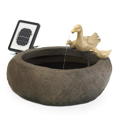 Duck Pond Solar Fountain