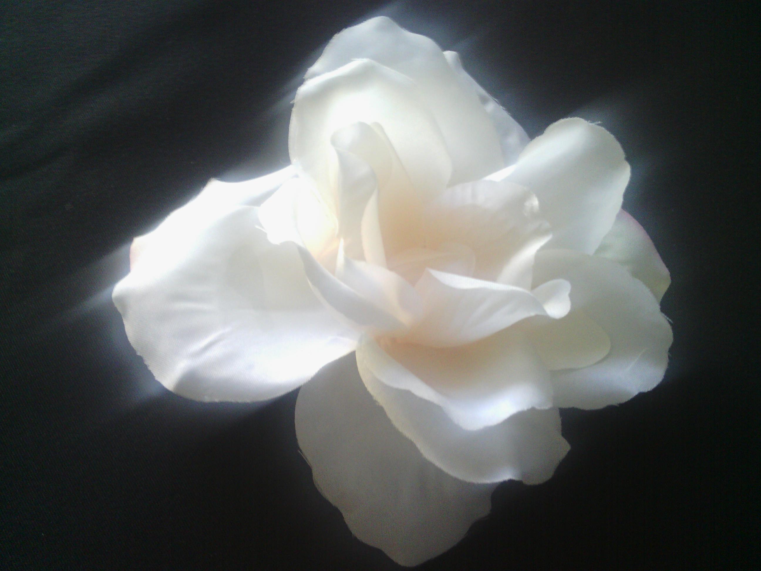 Nikki S Knitting And More Flower Hair Clip Large White Flower