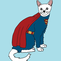 Superman cat, 5x7 print