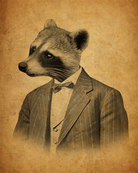 Raccoon In A Suit 8x10 Print On Storenvy