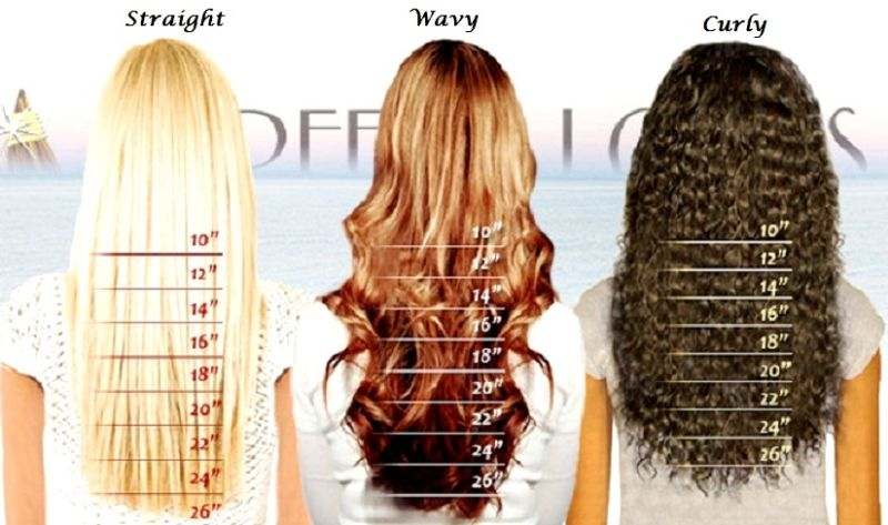 Hair Length Chart On Storenvy