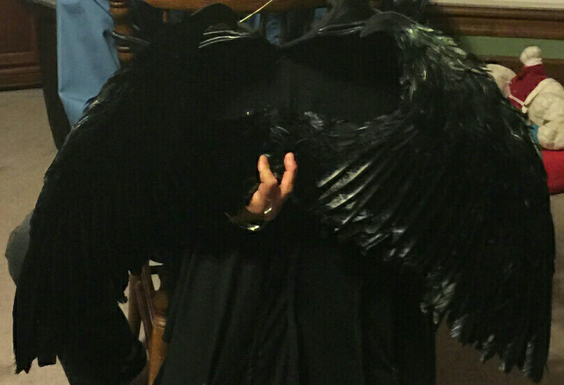 Maleficent Black Feather Costume Wings Festival Cosplay