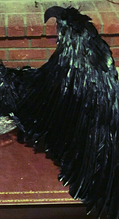ee68be9b0d8 Maleficent Black Feather Costume Wings-Festival-Cosplay - Thumbnail 1 ...