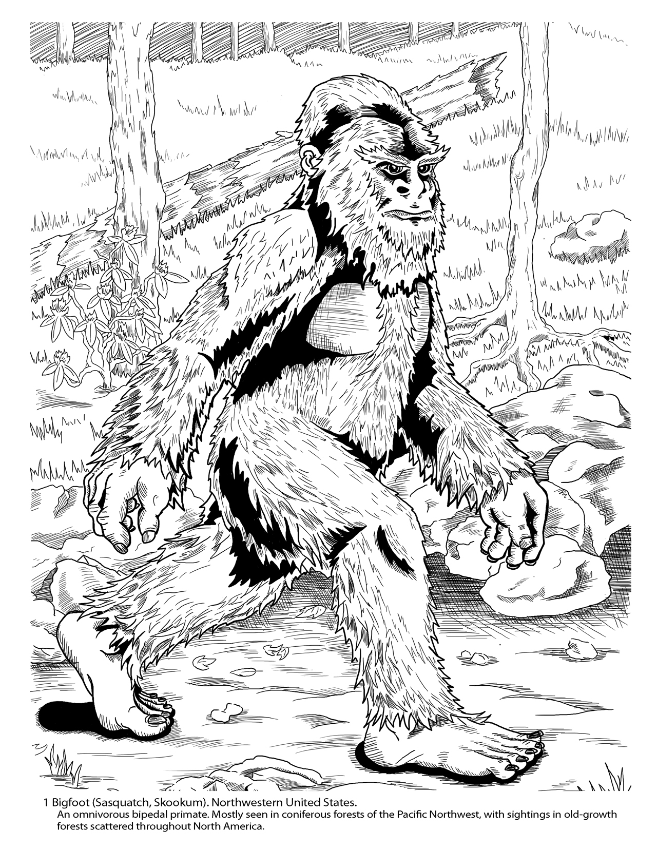 bigfoot presents coloring pages - photo#14