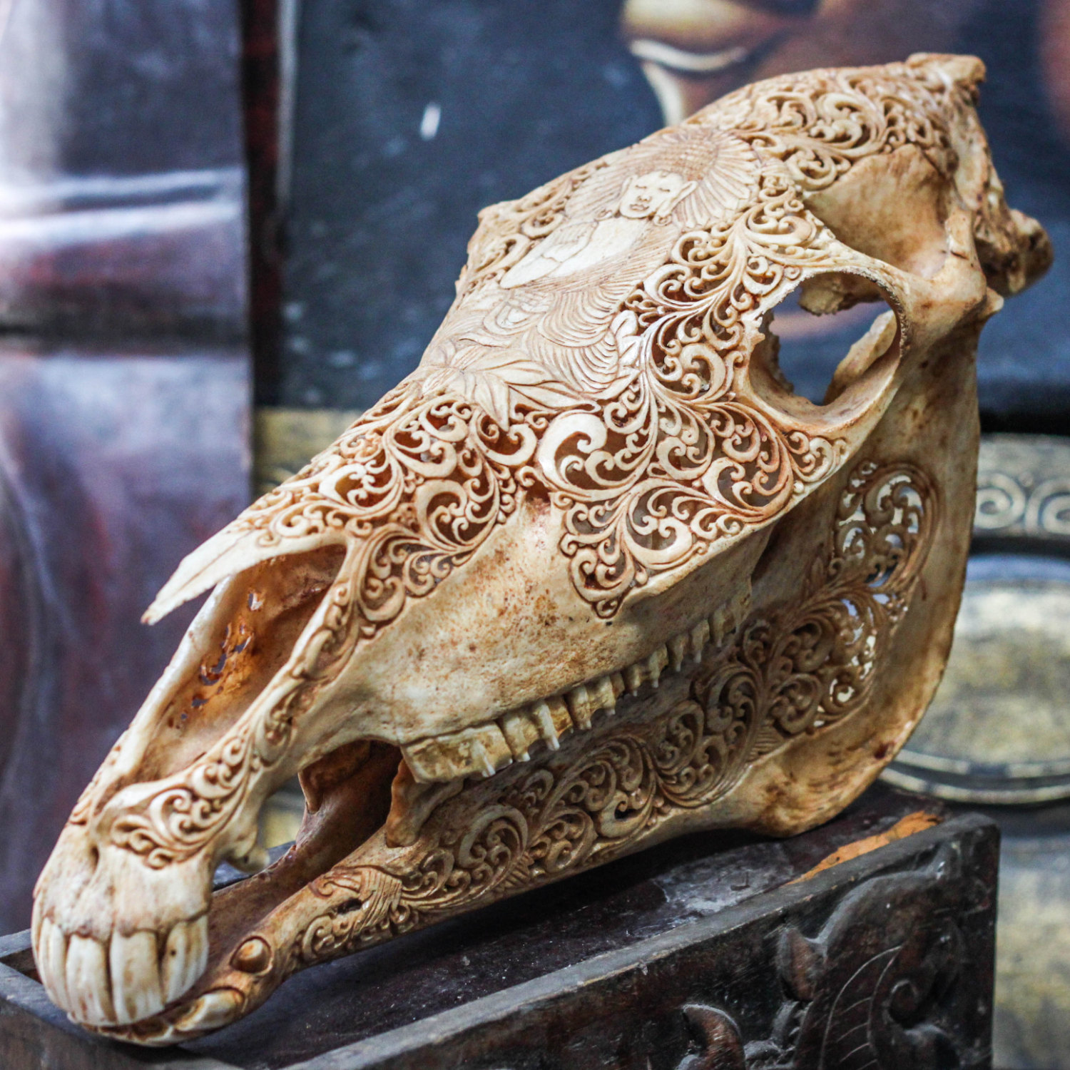 Hand Carved Buddha Horse Skull Real Mule Animal Skull Bone With