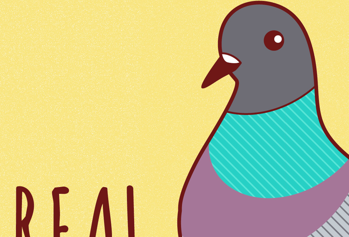 Funny Greeting Card Youre Real Coo Pigeon Just Because All