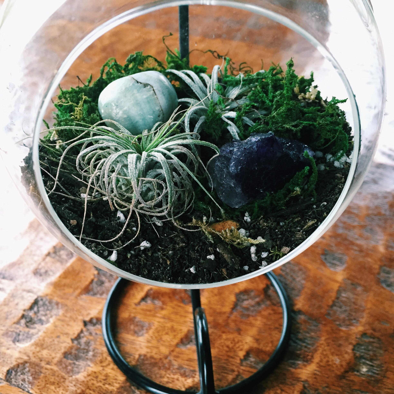 Hanging Crystal Terrarium Kit On Storenvy