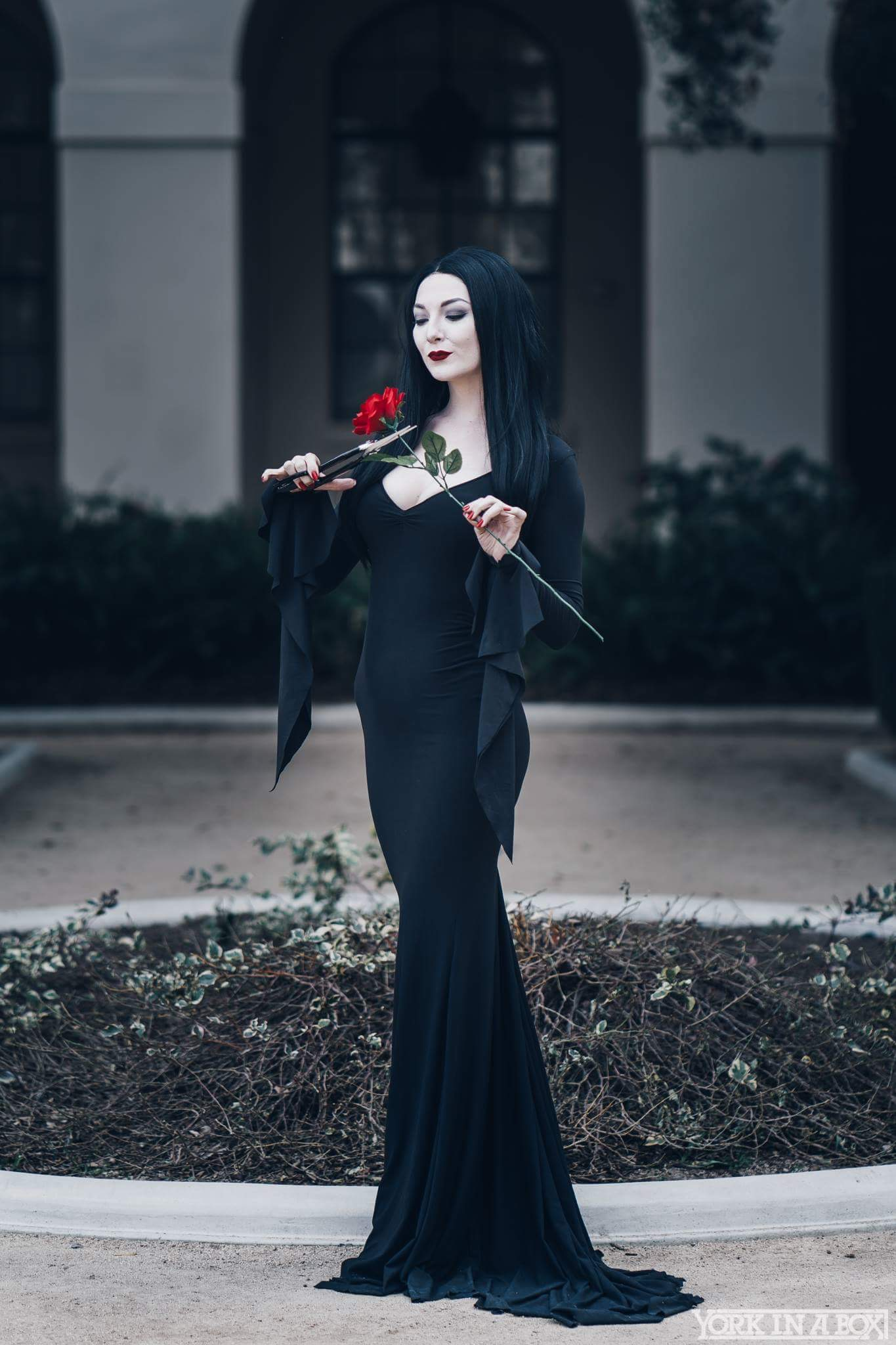 On Morticia Morticia Addams Storenvy Storenvy Dress On Morticia Addams Addams Dress XTPkZOiu