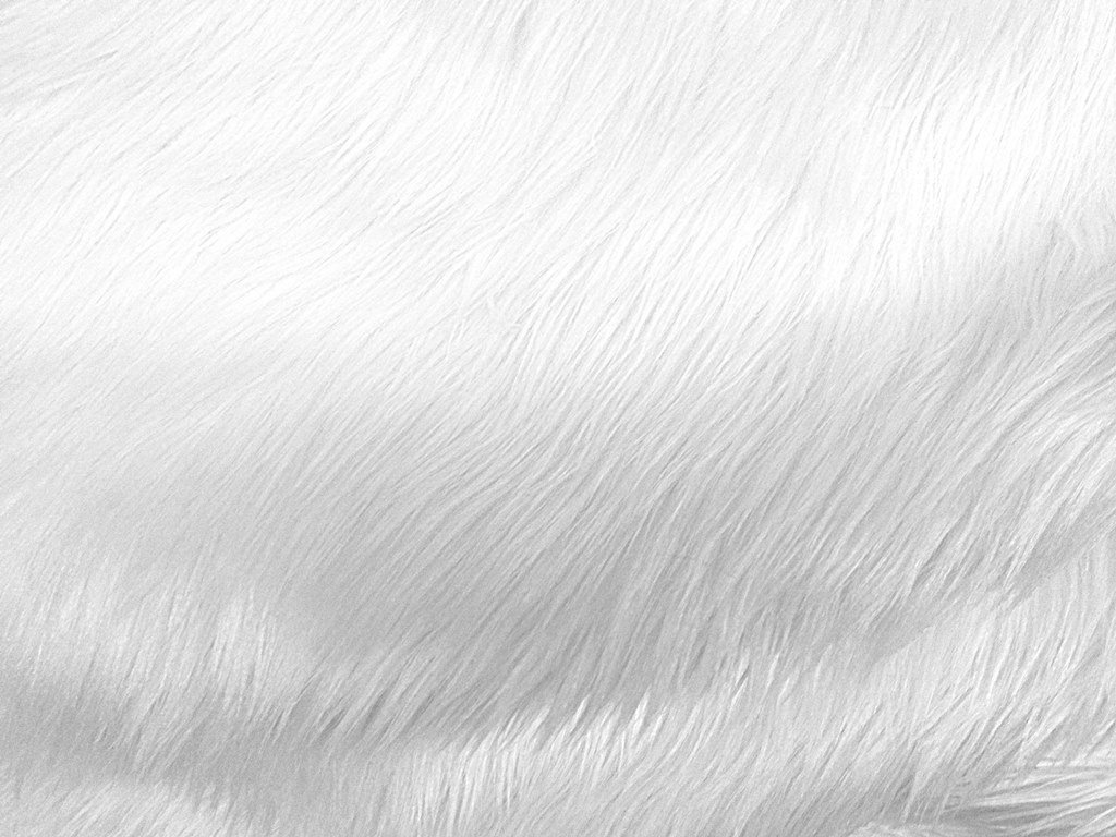 Yusland Faux Fur Area Rug Hairy Shaggy Rugs Large Faux Sheepskin Fleece  Carpets Bedroom from excedusa