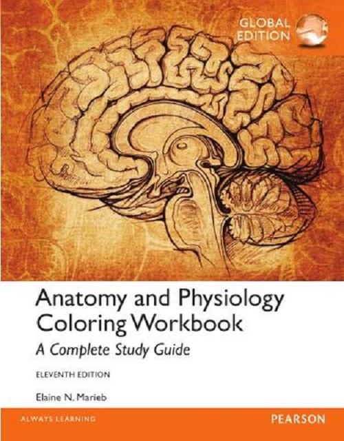 Prices Anatomy Ebook